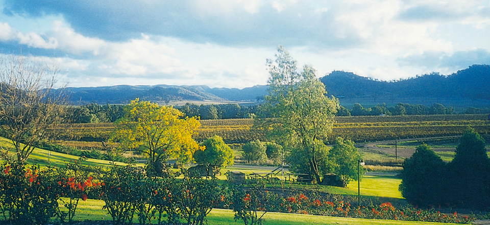 sydney limo wine tours