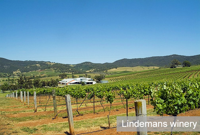 Lindemans Wines winery Hunter Valley